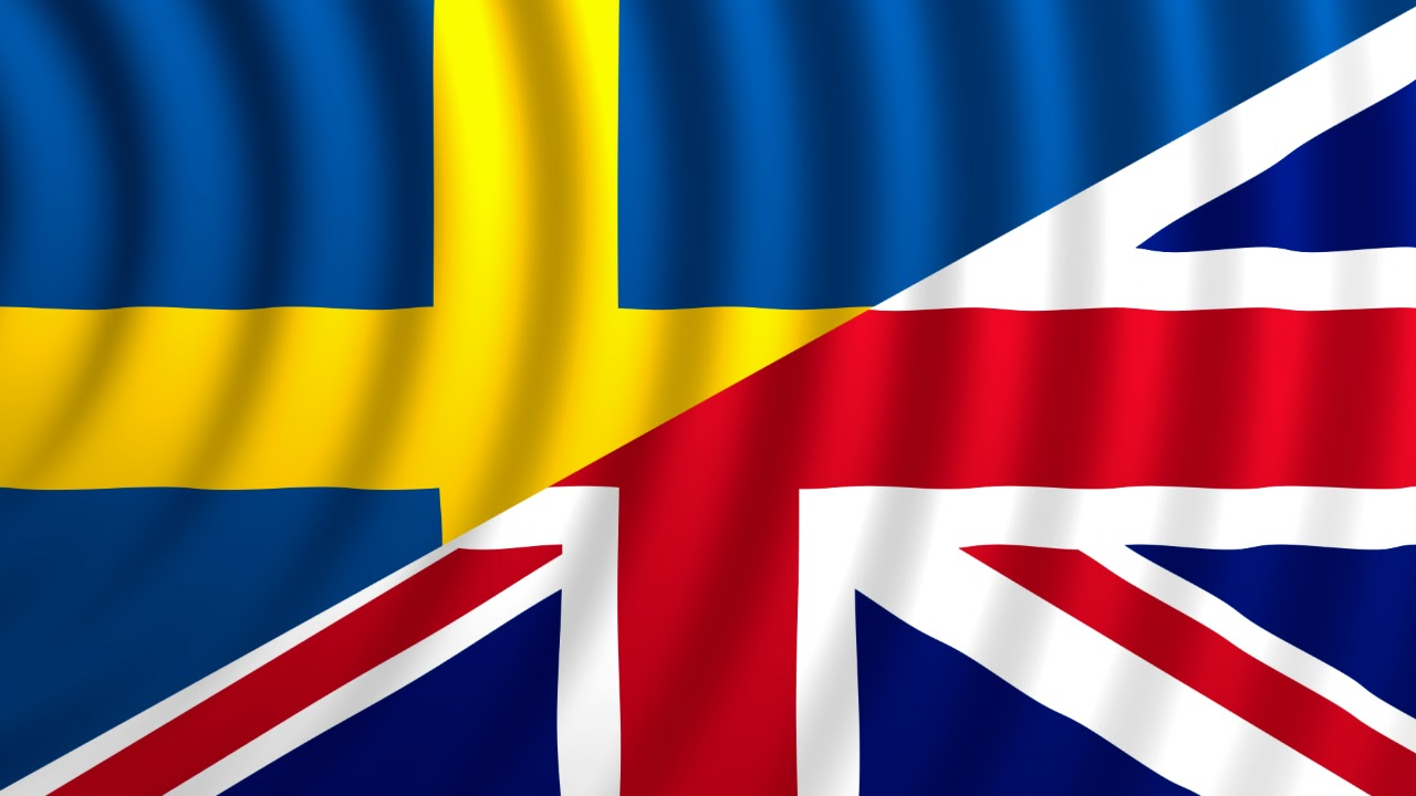Anglicko-švédské překlady provozních a montážních manuálů manuálech a textech. Expresní kontakt: +420 608 666 582.
